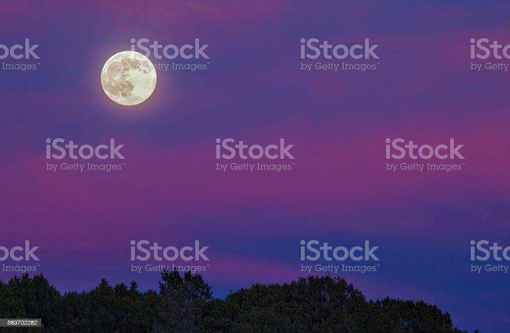 Full Moon at Sunset stock photo