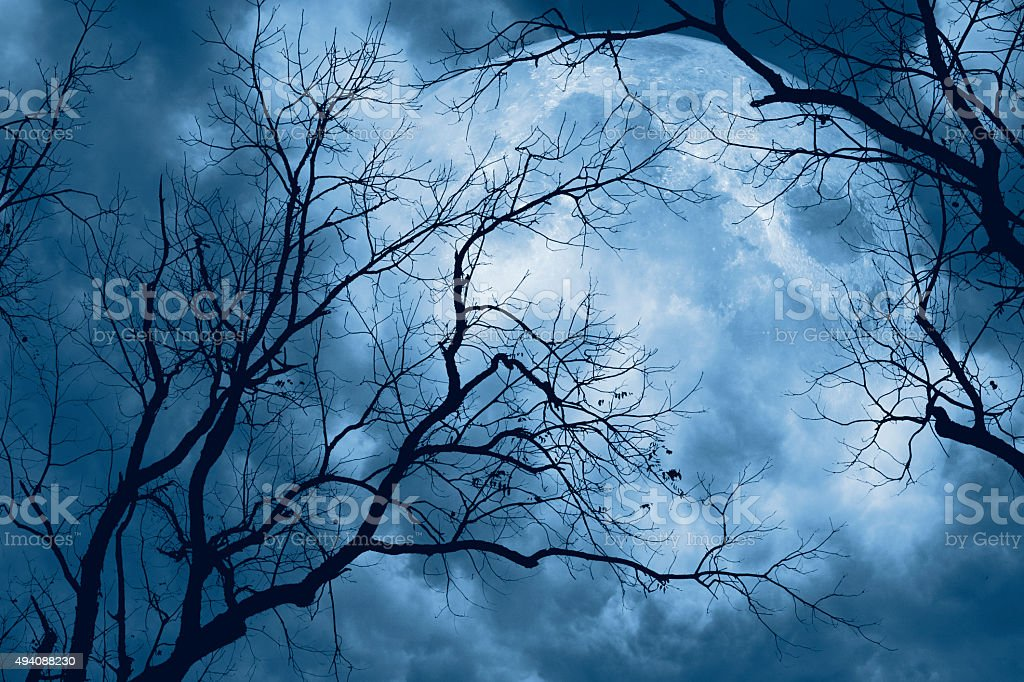 Full Moon Creepy Night stock photo