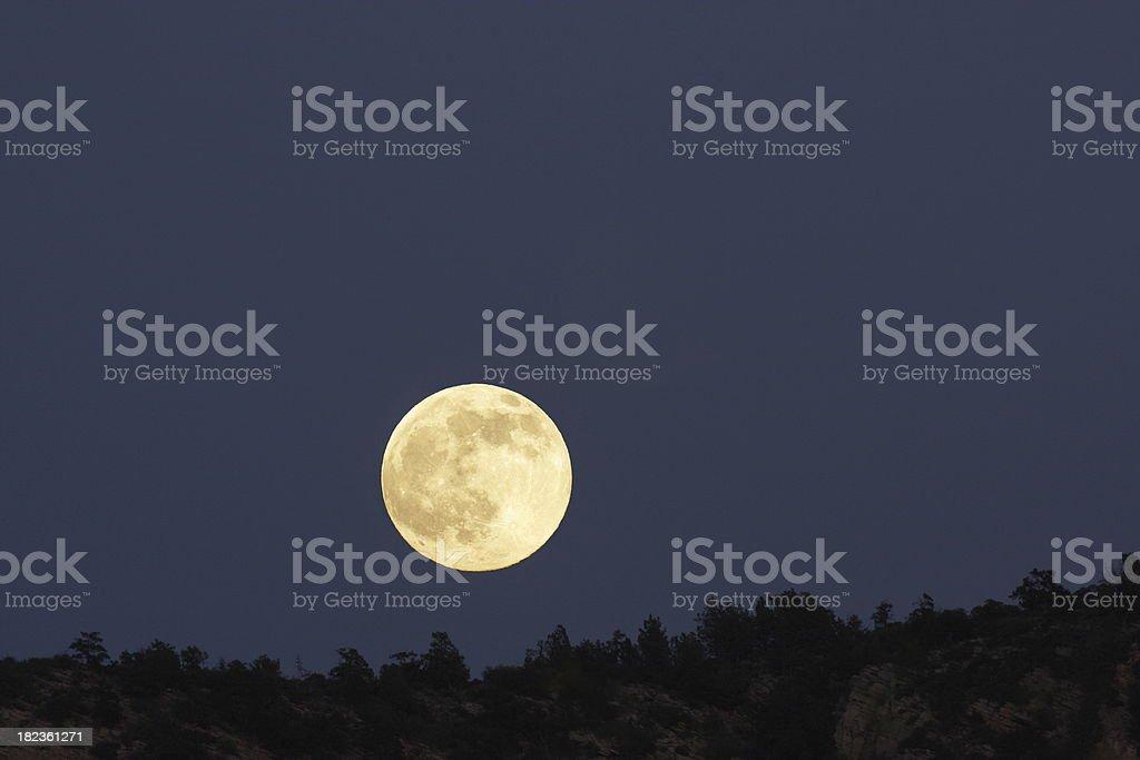 Full Moon Desert Night Silhouette stock photo