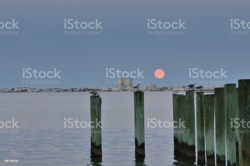 Full Moon Over Beach Condos And Pilings royalty-free stock photo