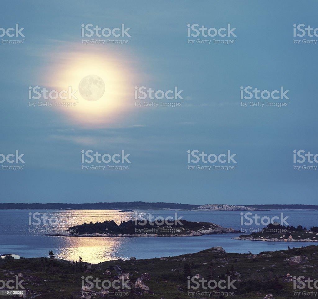 Full Moon Rising royalty-free stock photo