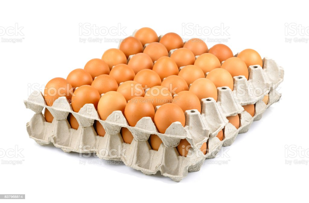 Full tray of freshly laid free range organic eggs, Row of eggs in box, eggs in cartons stock photo