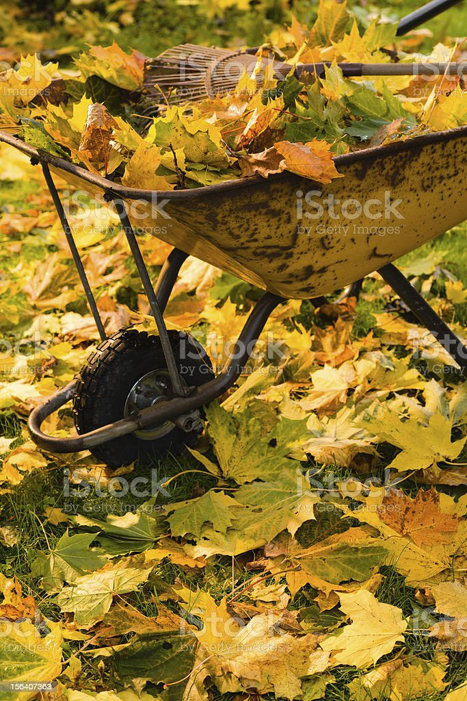 Full wheelbarrow royalty-free stock photo