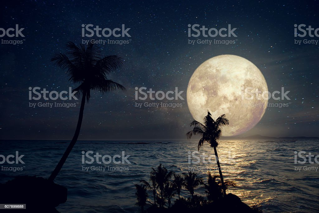 fullmoon and beach stock photo