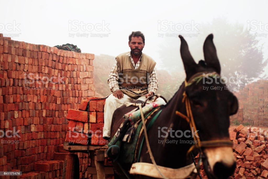 Fully loaded of donkey cart of bricks stock photo