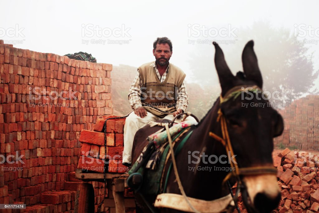 Fully loaded of donkey cart of bricks stock photo