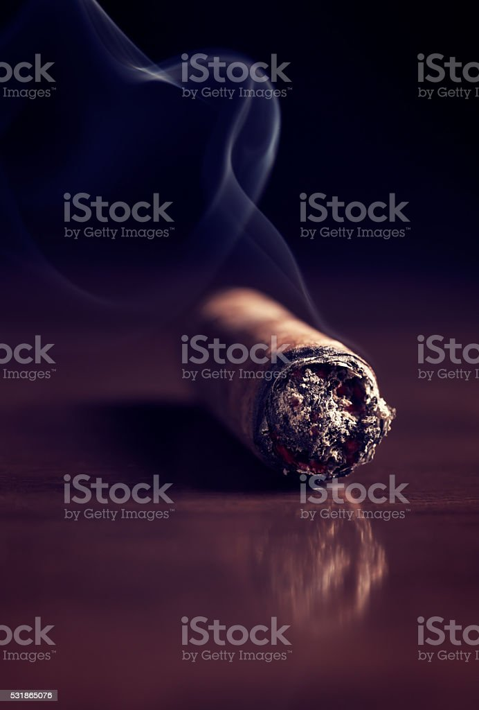 Fuming Havana cigar stock photo