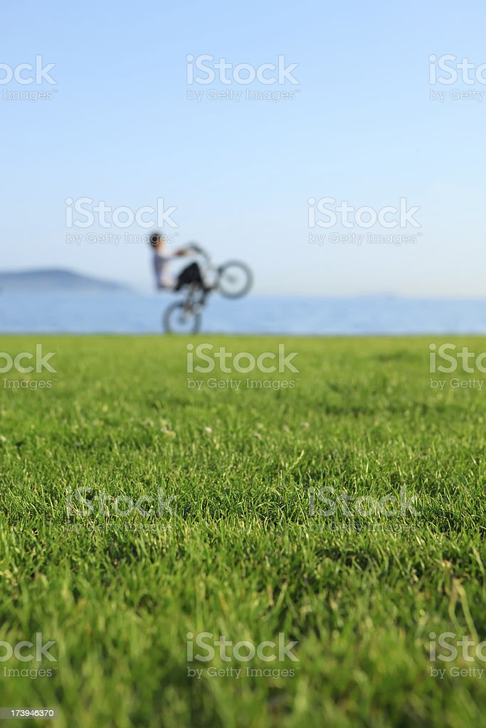 Fun and nature royalty-free stock photo