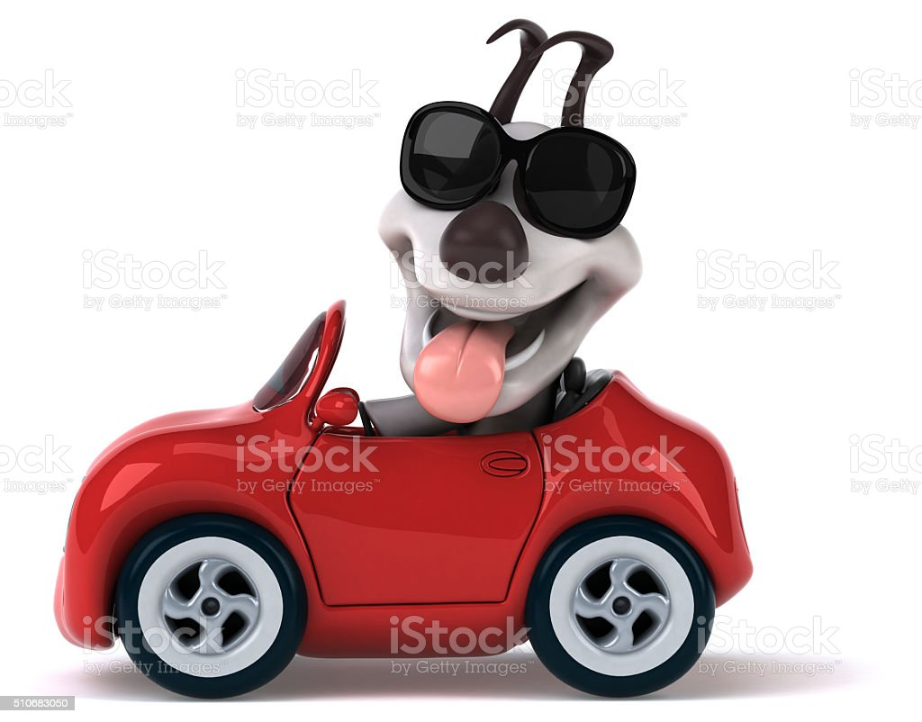 Fun dog stock photo
