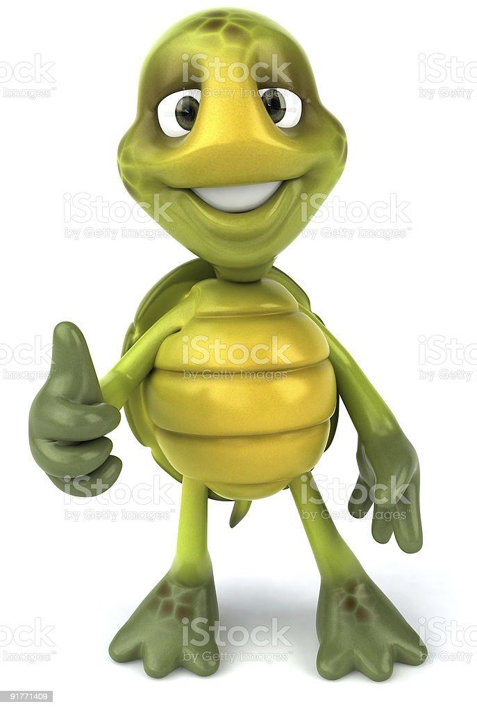 Fun green turtle stock photo