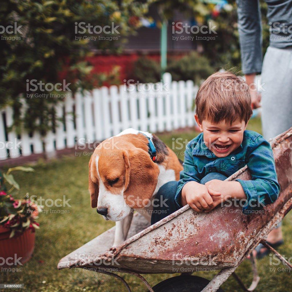 Fun in the backyard stock photo