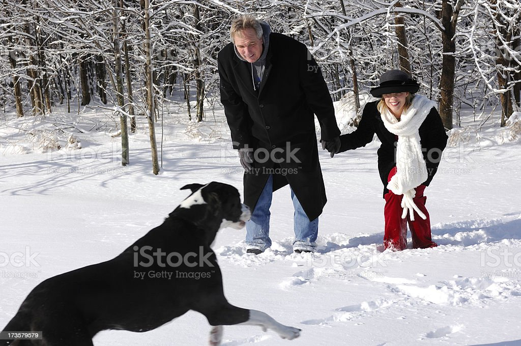 Fun in the Snow royalty-free stock photo