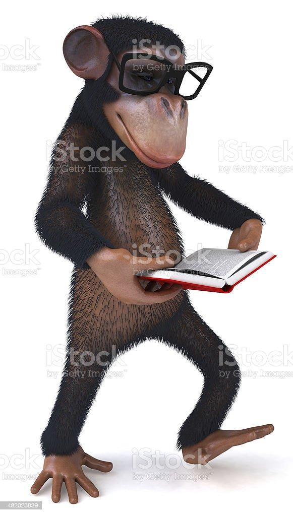 Fun monkey stock photo