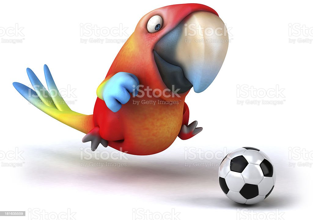 Fun parrot royalty-free stock photo