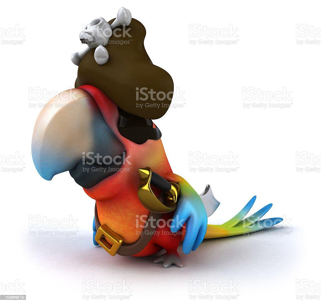 Fun parrot pirate royalty-free stock photo