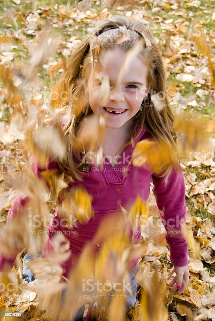 Fun with Leaves royalty-free stock photo