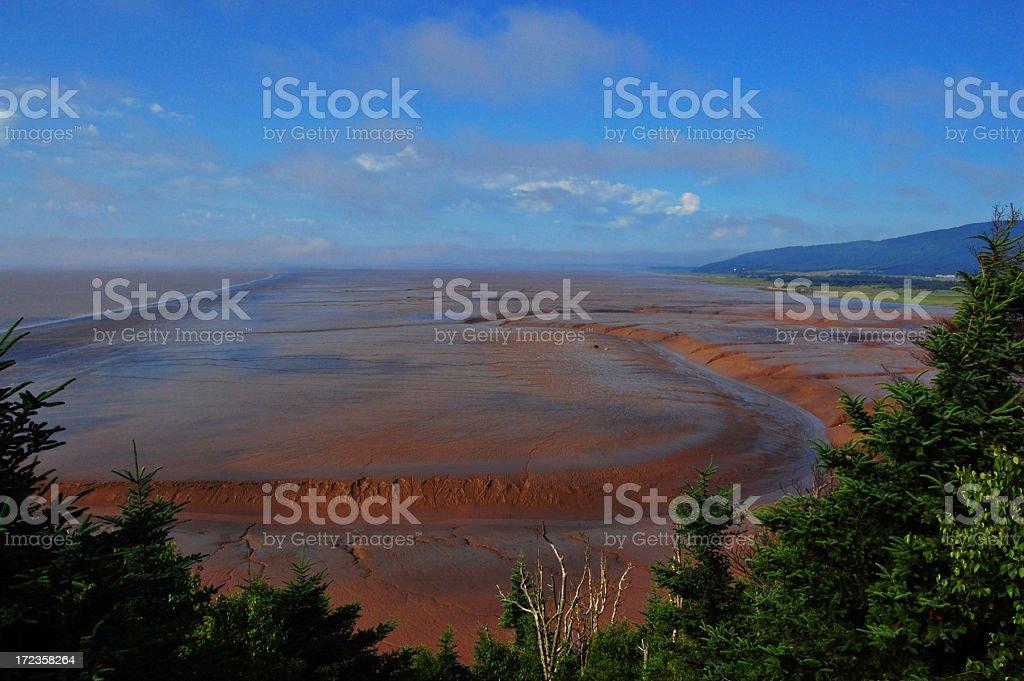 Fundy Bay Mudflats ocean floor stock photo