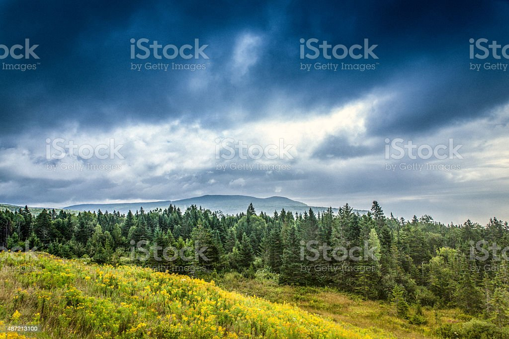 Fundy National Park stock photo