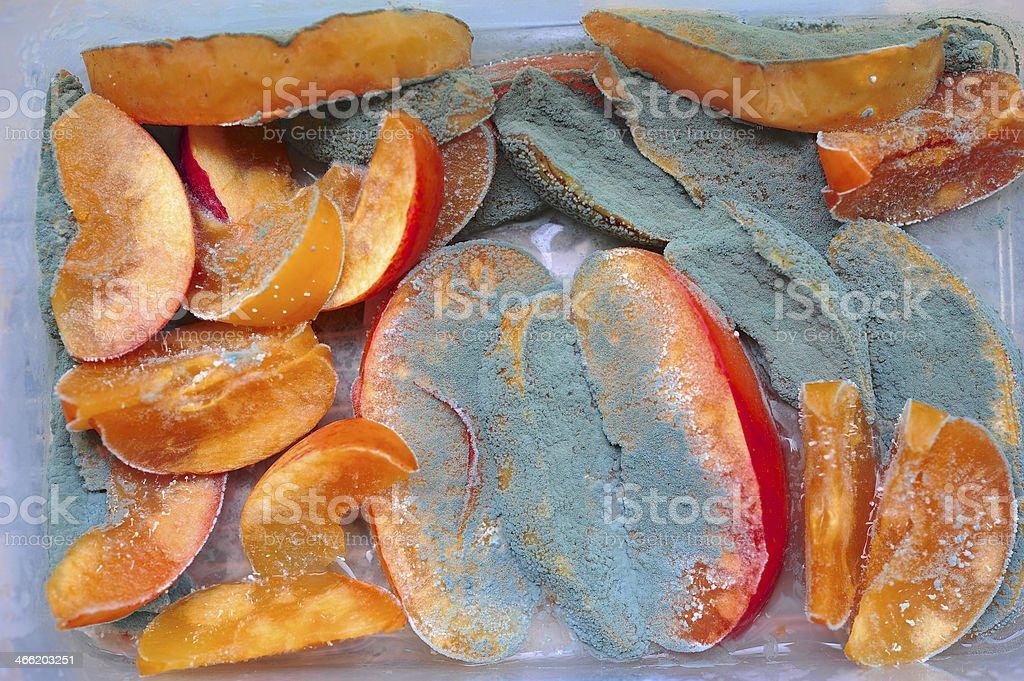 Fungi in fruit stock photo