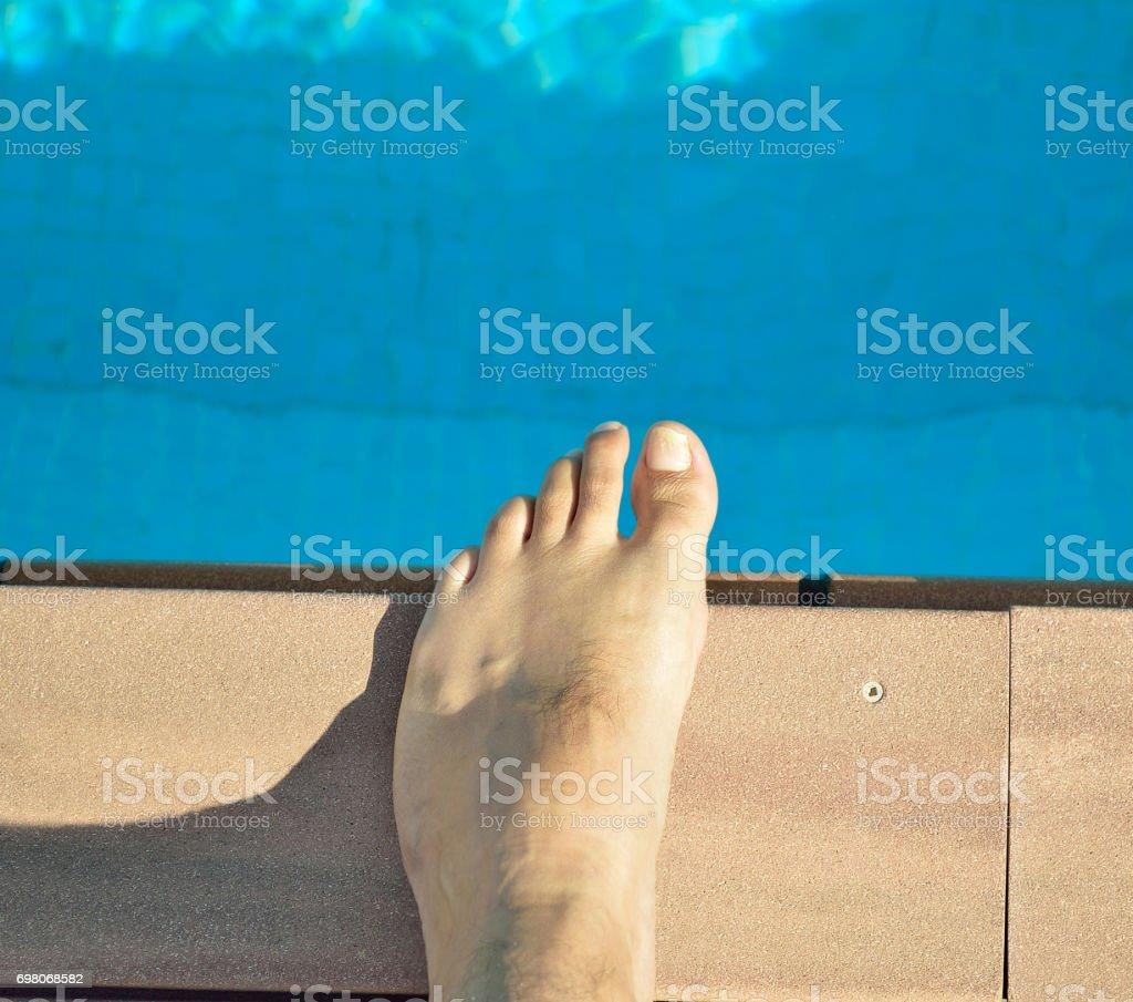 Fungi in the pool stock photo