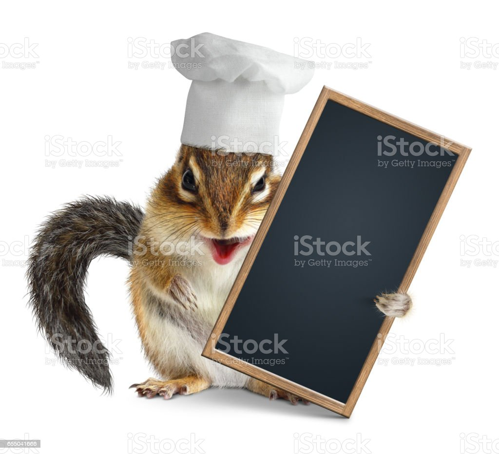 Funny chipmunk with chef cook hat hold menu blackboard stock photo