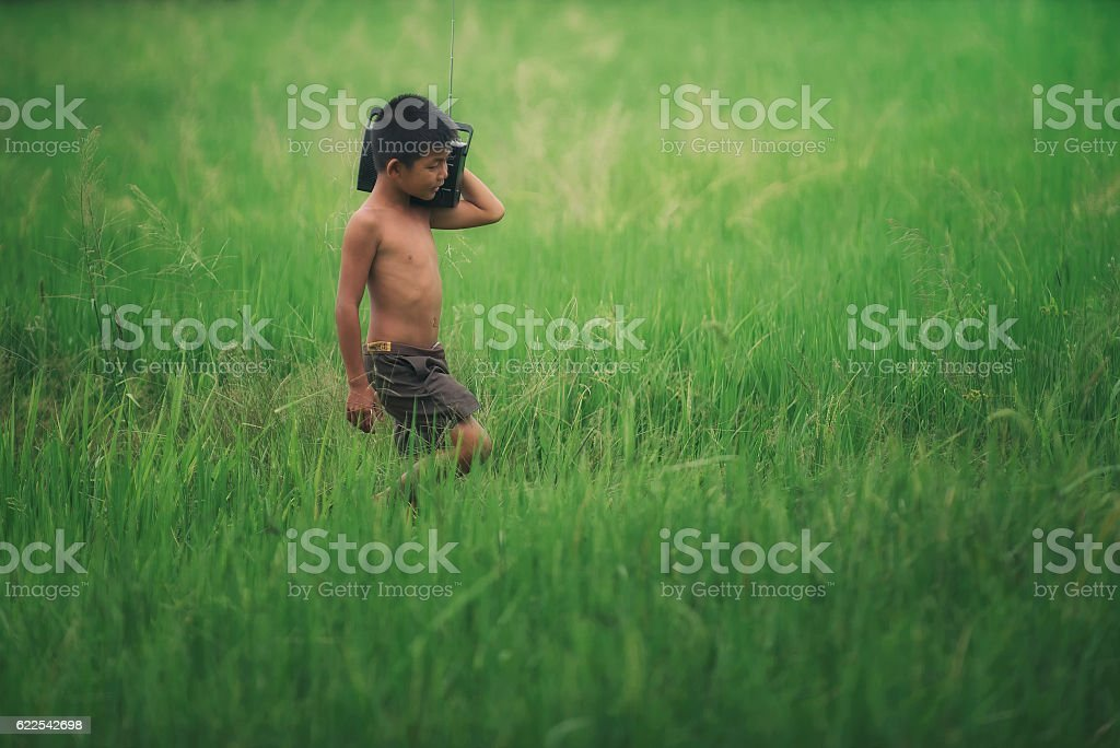 Funny farmer Boy playing in green rice field. stock photo