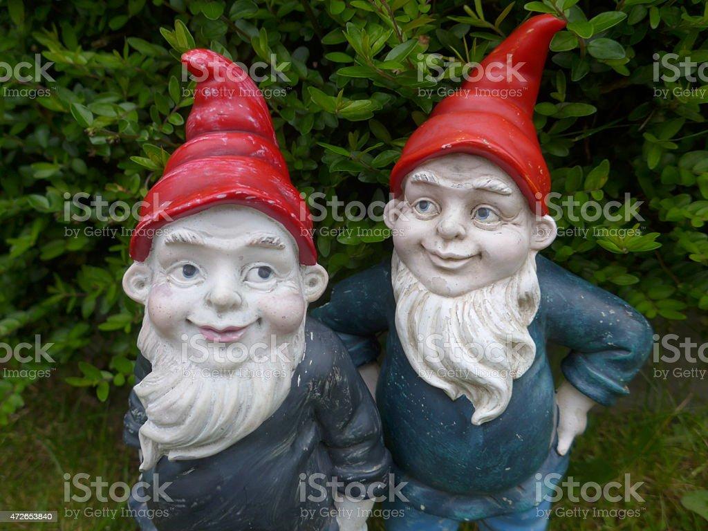 Funny garden gnomes - Bild - stock photo