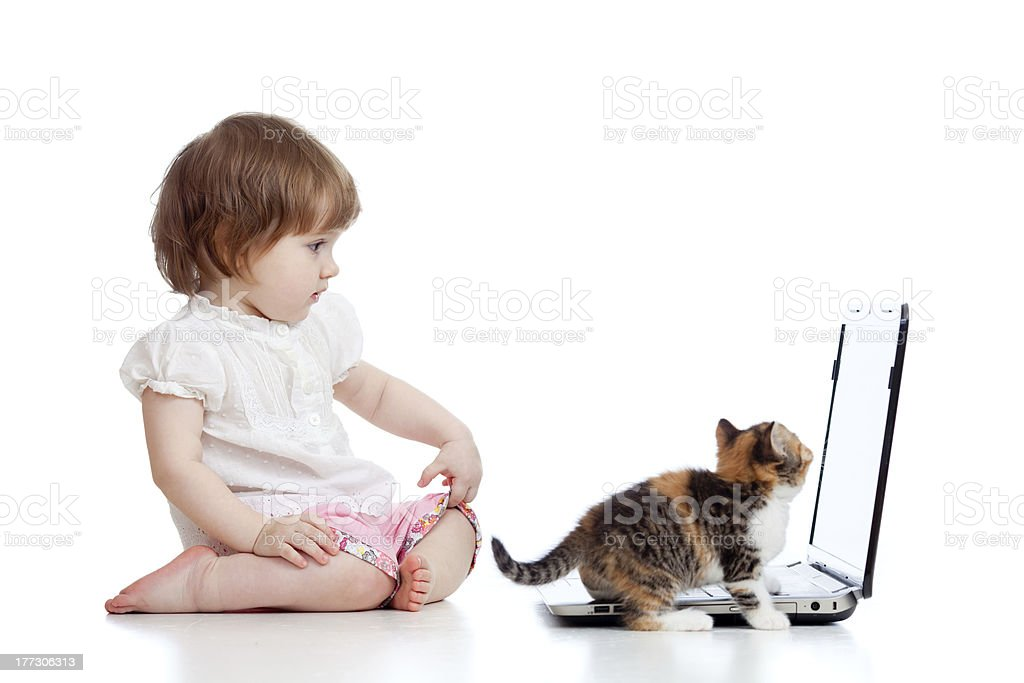 Funny girl using a laptop. Kitten walking near child. royalty-free stock photo