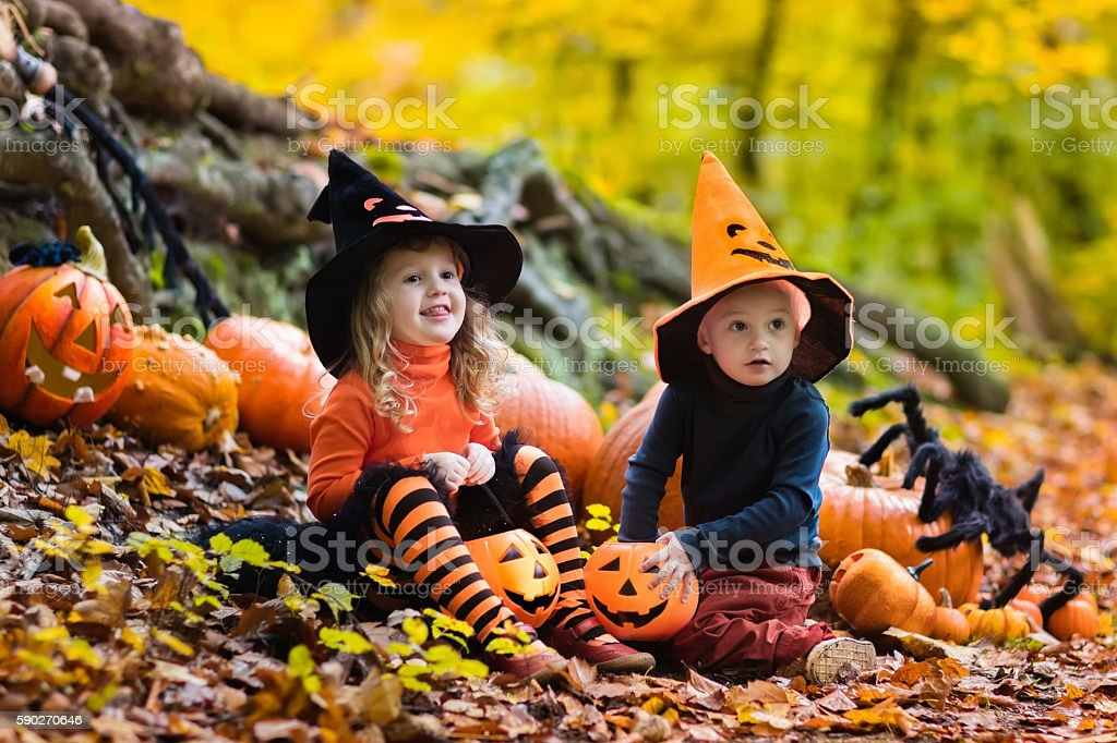Funny kids with pumpkins on Halloween stock photo