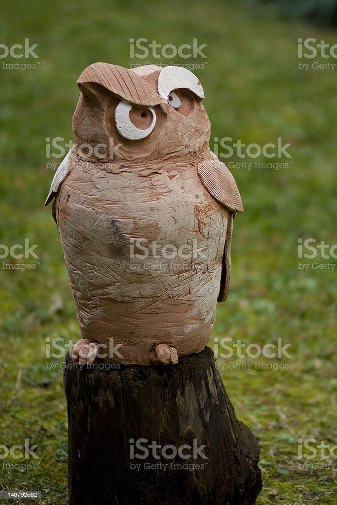 Funny Owl Bird stock photo