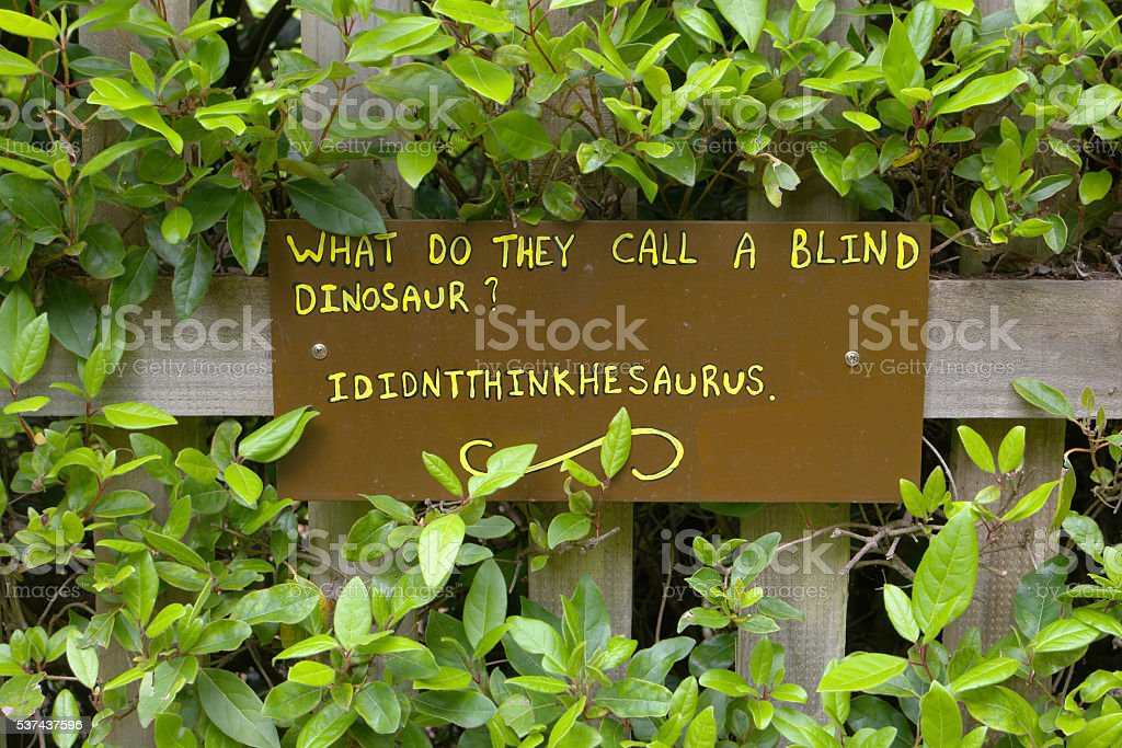 funny sign what do they call a blind dinsosaur? ididnththinkhesaurus stock photo