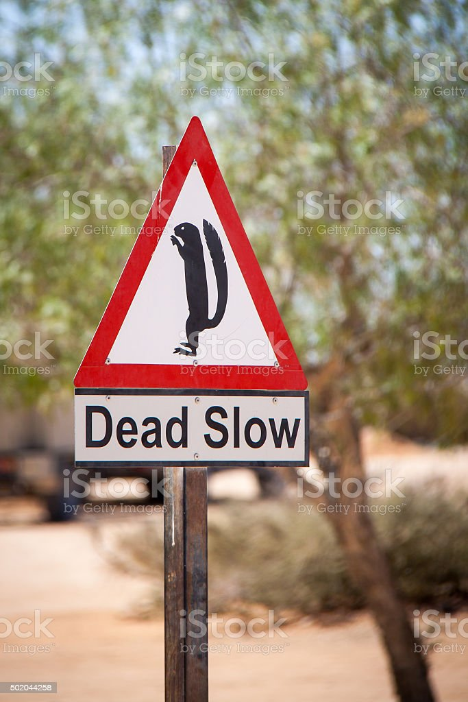 Funny Slow Warning Sign with Squirrel in Africa stock photo
