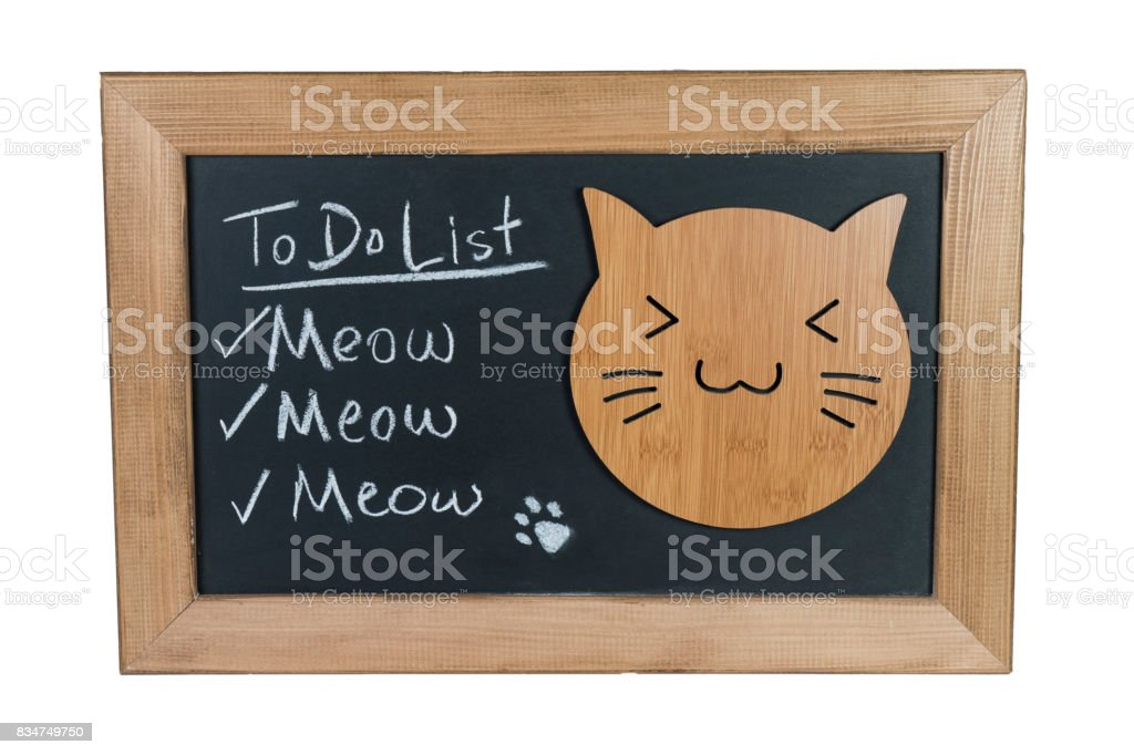 Funny To Do List on Blackboard written with Chalk and Cat stock photo
