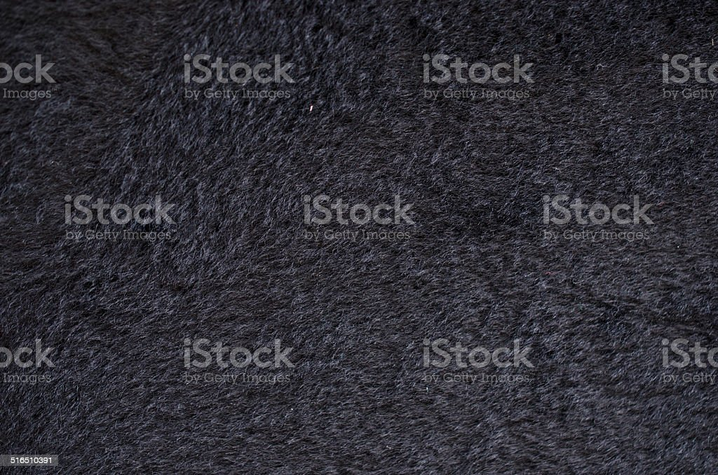 fur animal stock photo