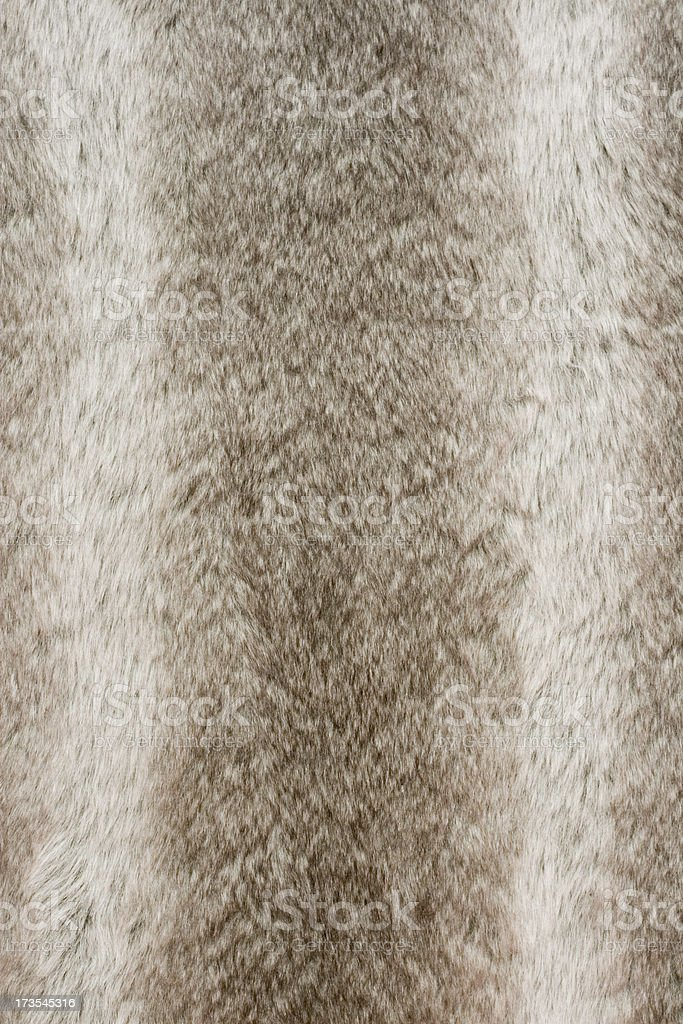 Fur Background stock photo