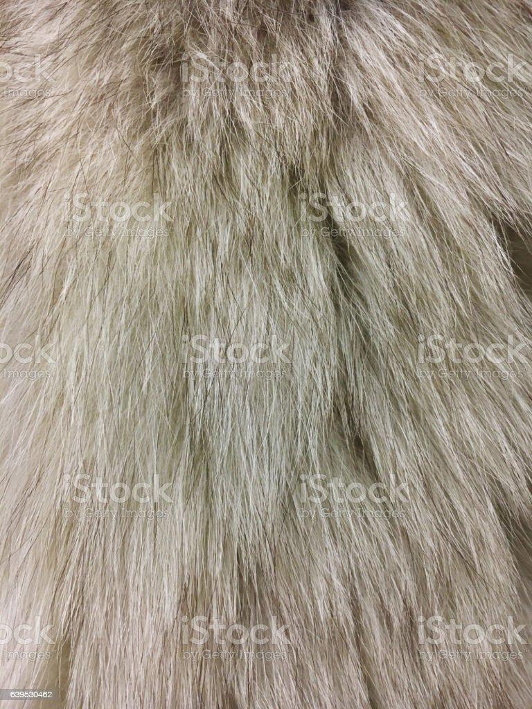Fur closeup stock photo