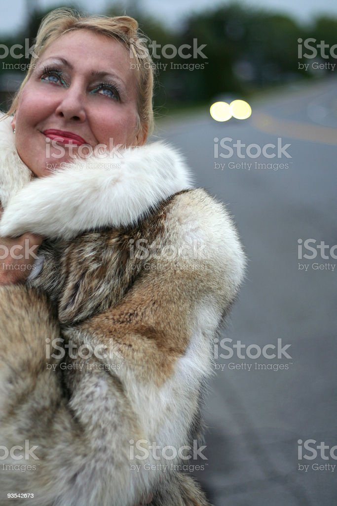 Fur Coat And  A Dream royalty-free stock photo