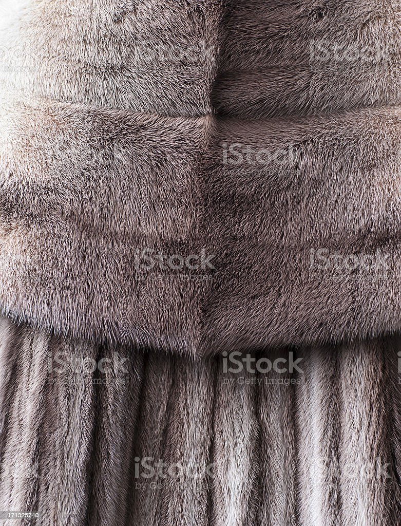 Fur Coat stock photo