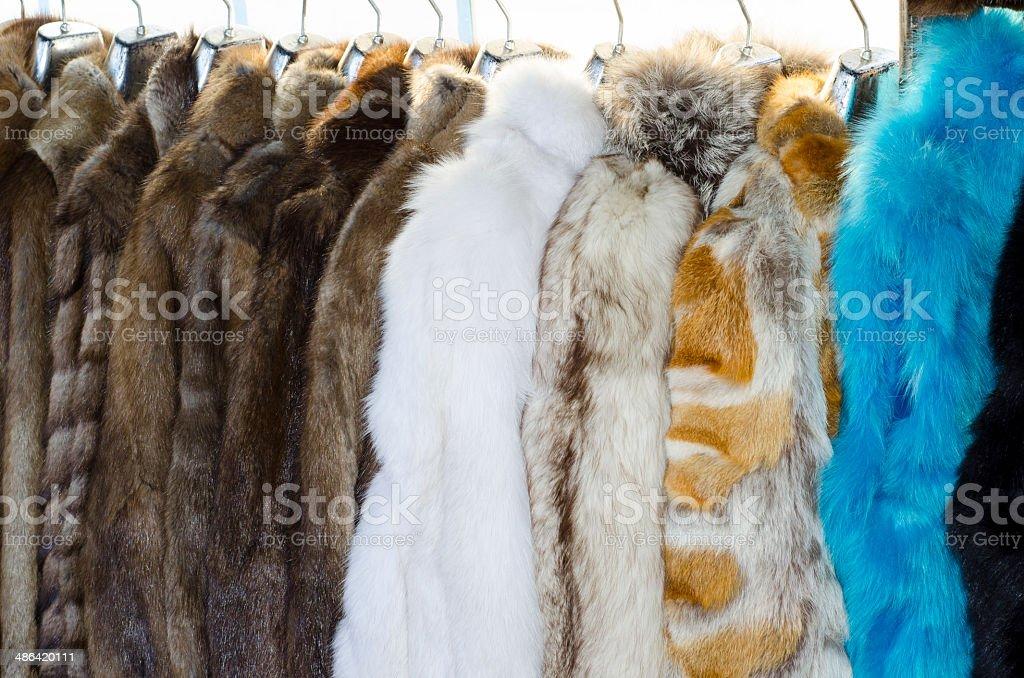 fur coats stock photo