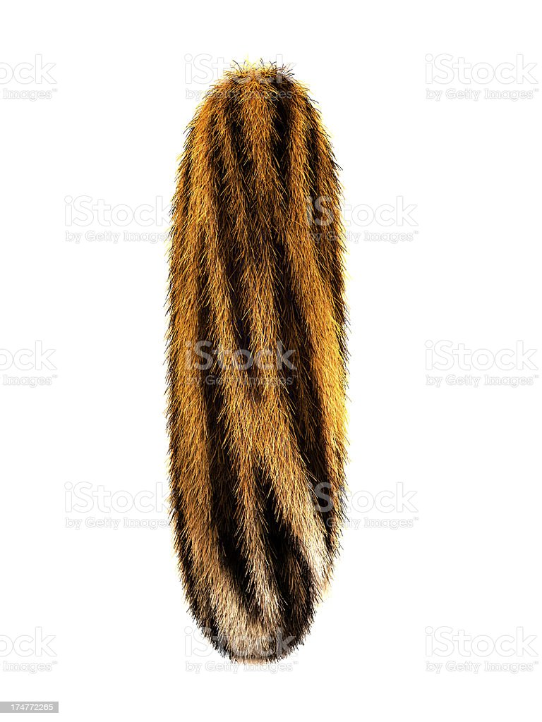 Fur letter l royalty-free stock photo