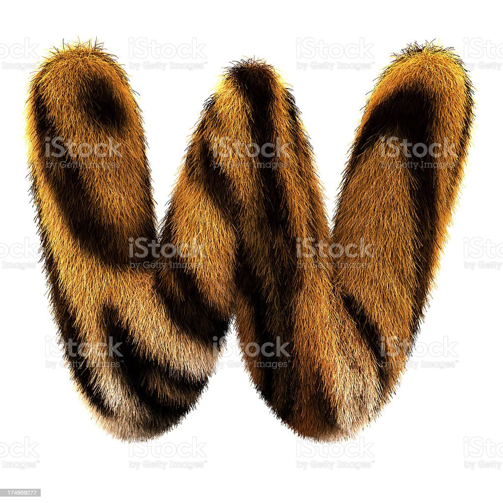 Fur letter W royalty-free stock photo