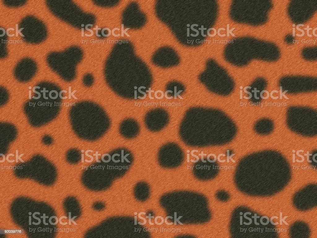 Fur of gepard royalty-free stock photo