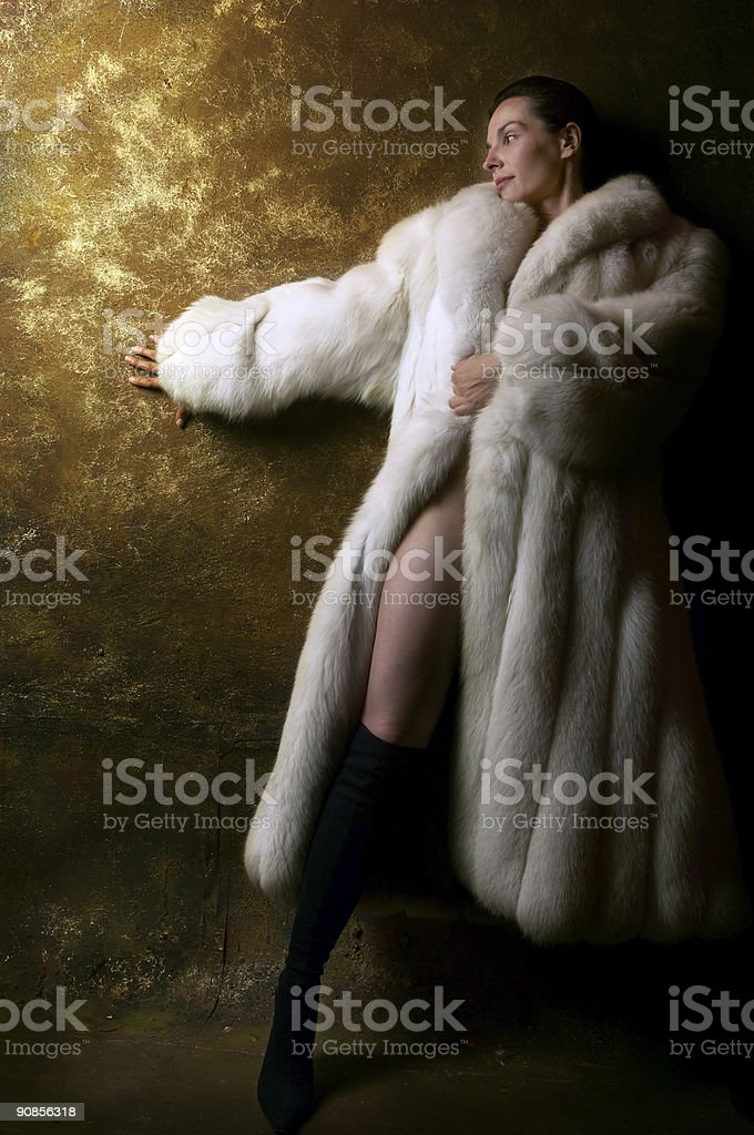 Fur on the golden wall royalty-free stock photo
