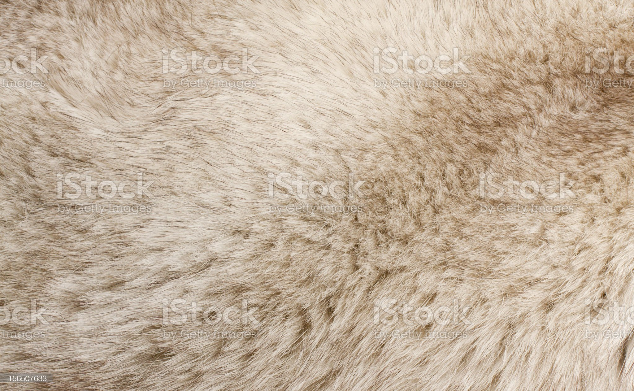 fur texture royalty-free stock photo