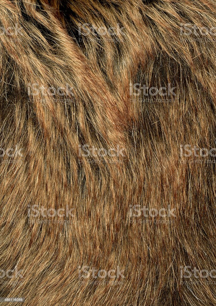 Fur Texture stock photo