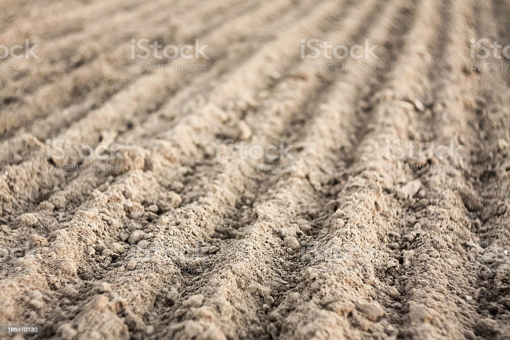 Furrows in a field after plowing it. royalty-free stock photo