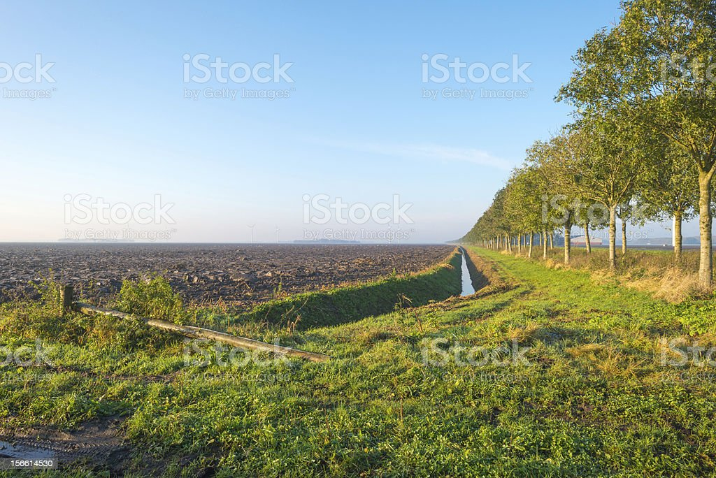 Furrows in a field at dawn royalty-free stock photo