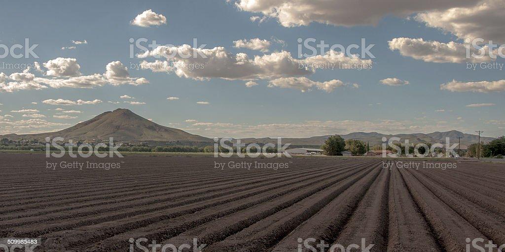 Furrows in Cultivated Farm Field stock photo