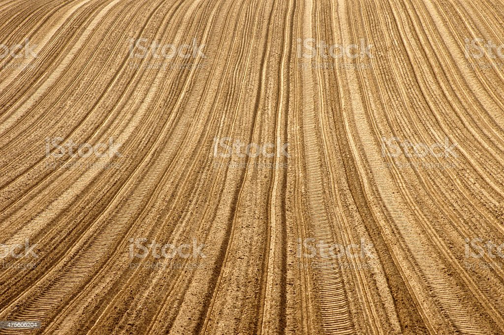 Furrows on the field stock photo