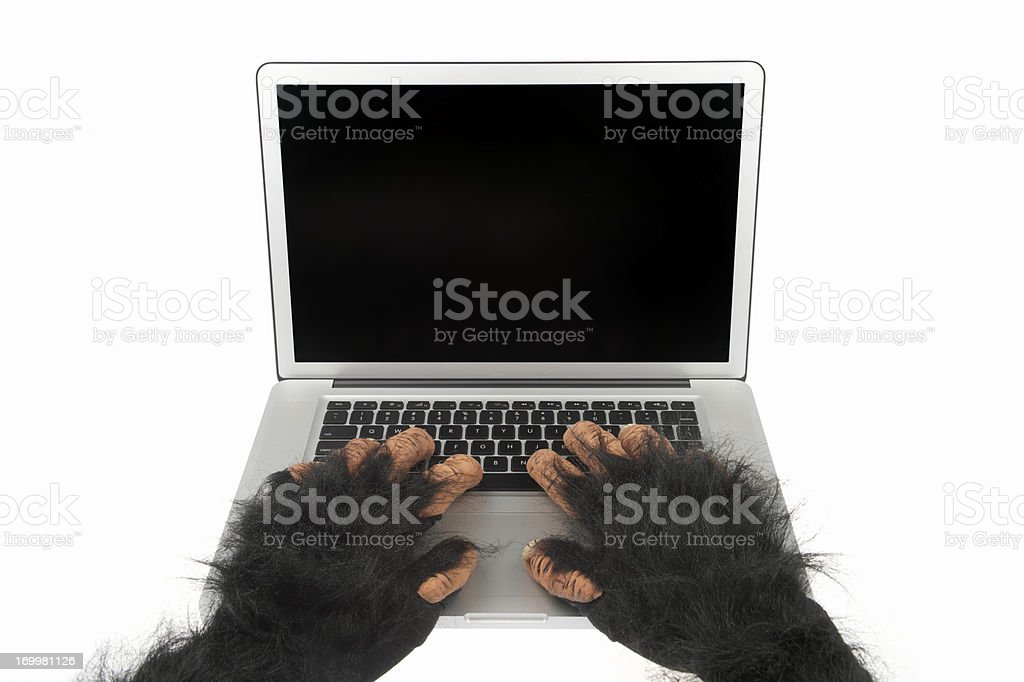 Furry Animal Hands Use Laptop Computer with Blank Screen stock photo
